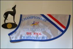 chardonnay-champ-fr-2013-002.jpg