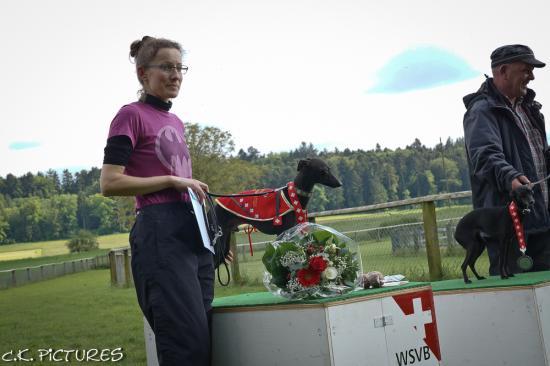 coursing-schweizermeisterschaft-lotzwil-02-06-2013-28.jpg